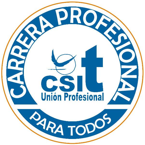 CARRERA PROFESIONAL SERMAS