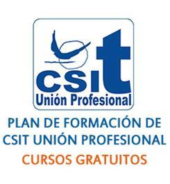 Plan de Formación CSIT UNIÓN PROFESIONAL LOCAL Y AGE