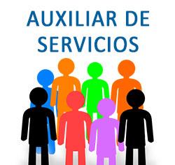 Aux. de servicios