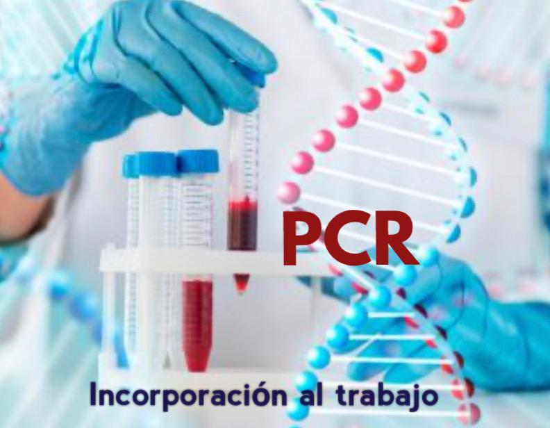 PCR Incorporación al trabajo
